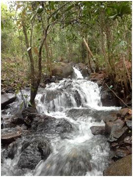 Alur kecil di perbukitan Tahura Sultan Adam yang mengalirkan air yang deras, jernih dan segar