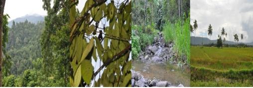 manfaat ekologis