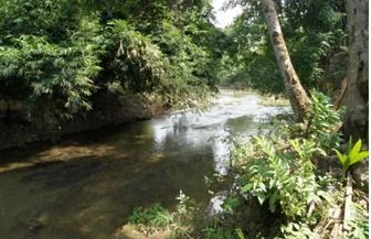 sungai paki