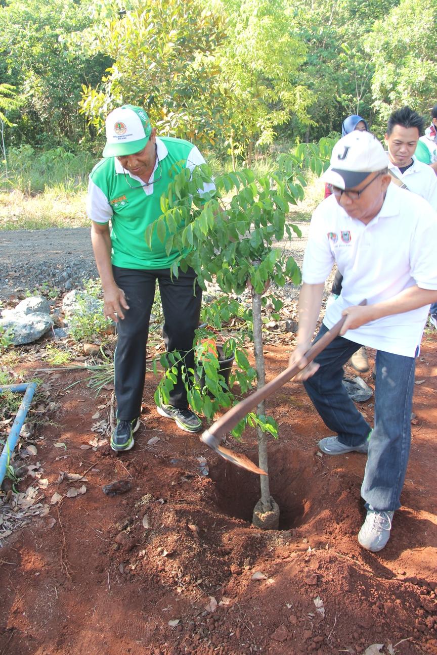Ir. Yun Trisnowo, mewakili Kadishutprop Kalsel melakukan penanaman bibit pohon