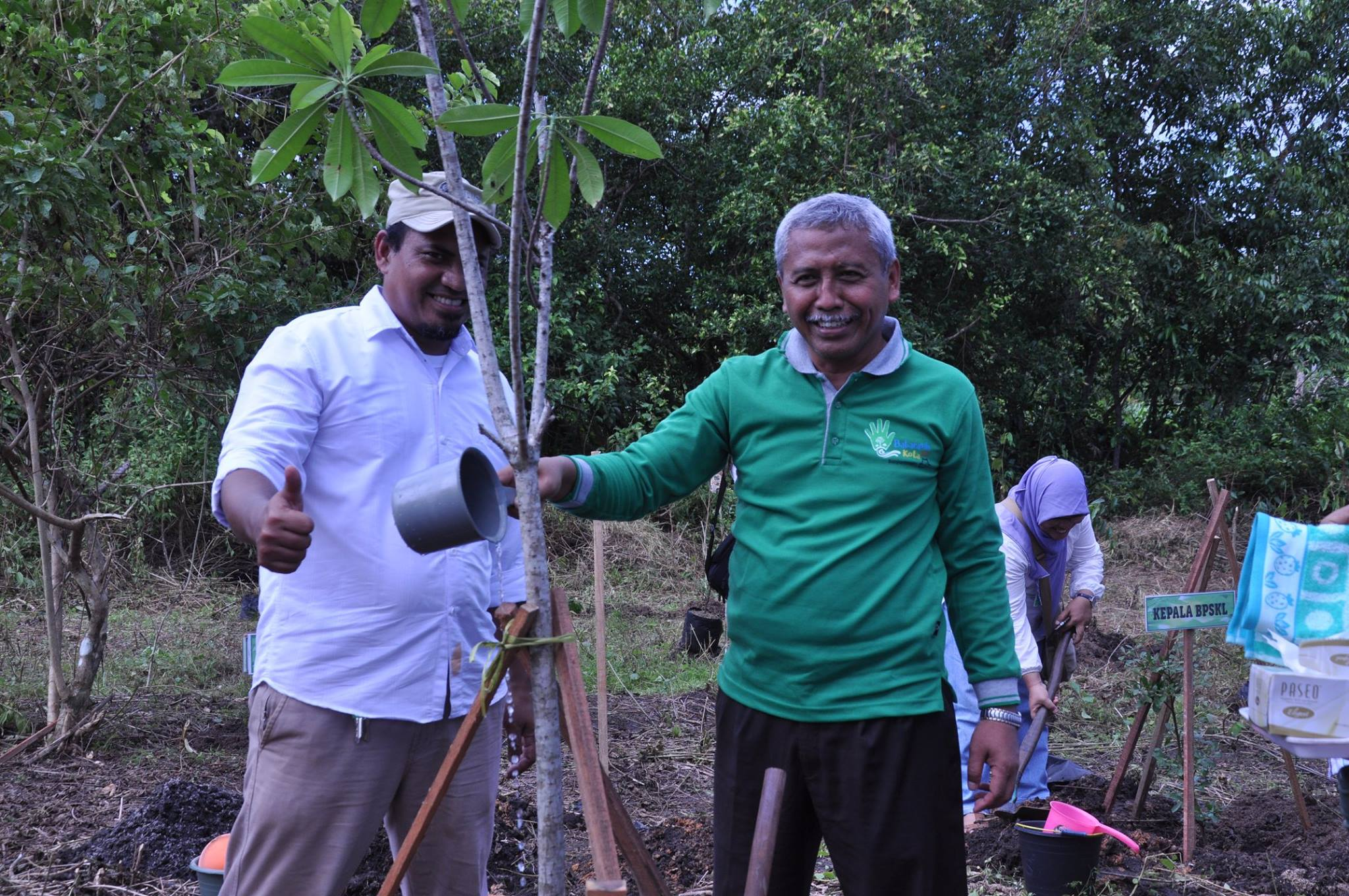 Penanaman pohon bintaro oleh Dirjen PDASHL disaksikan Kepala BPDASHL Barito